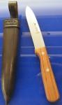 Lütters Loewen Messer 830 mit Scheide