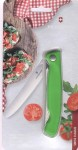 Victorinox Swiss Classic Foldable grün 6.7836.F4B Reisebrötchentafelklappmesser Welle